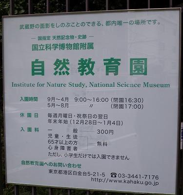 meguro1020a.jpg