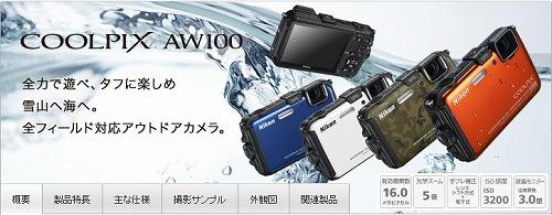 AW100a.jpg
