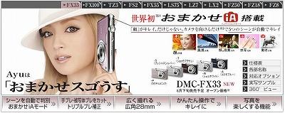 DMC-FX33a.jpg