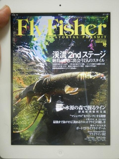 FF10a.jpg