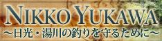 NYbanner_s.jpg