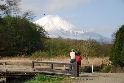 Nfuiji10504.jpg