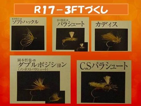 R17-3FT-all.jpg