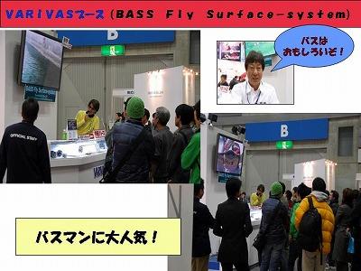 VARIVAS0212-2.jpg