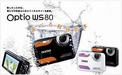 WS800814.jpg