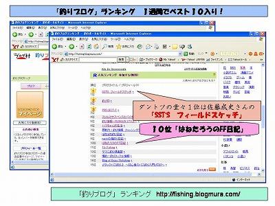 bloglanking0205-1.jpg