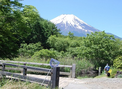 fuji0616.jpg