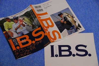 ibs0212.jpg