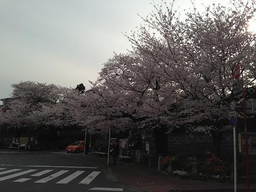 jiyu0326a.jpg