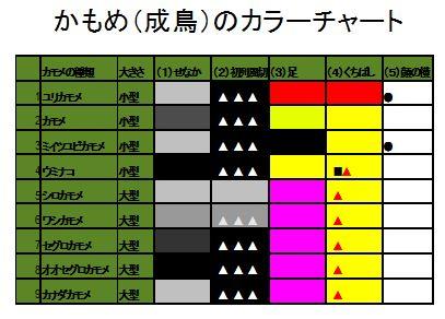 kamome1226c2.JPG