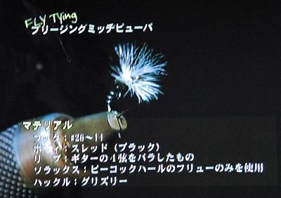simazaki0204c.jpg