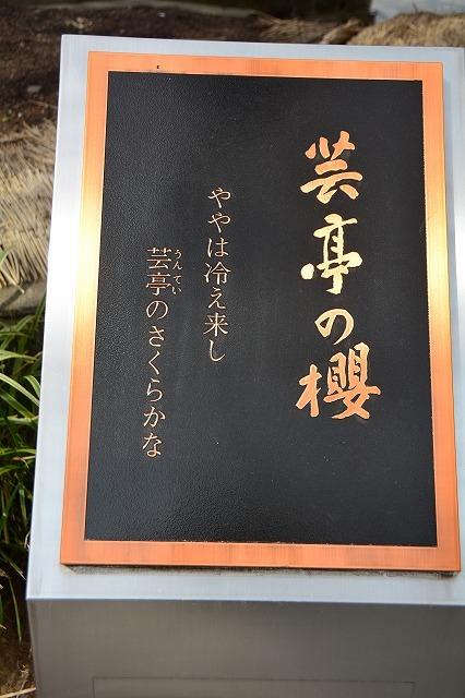 yokou0323a.jpg